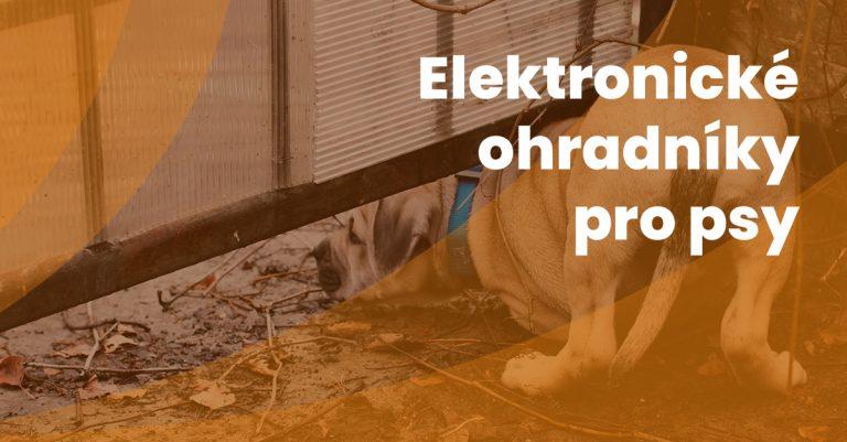 15 Elektronicke Ohradniky Pro Psy