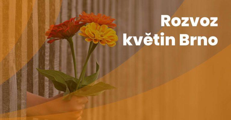 Rozvoz Kvetin Brno(1)