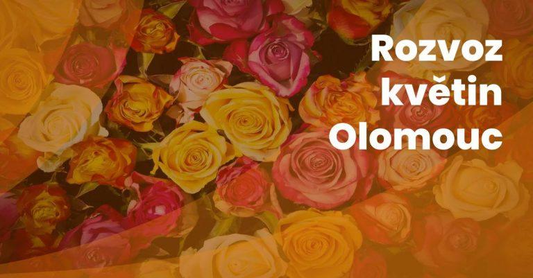 Rozvoz Kvetin V Olomouci
